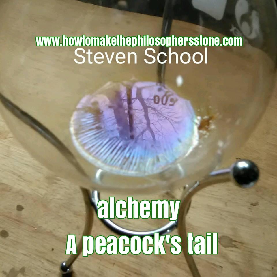 peacocks-tail-alchemy