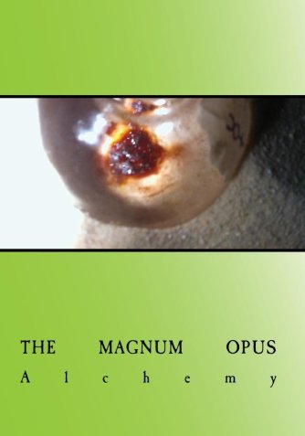 alchemy film the magnum opus