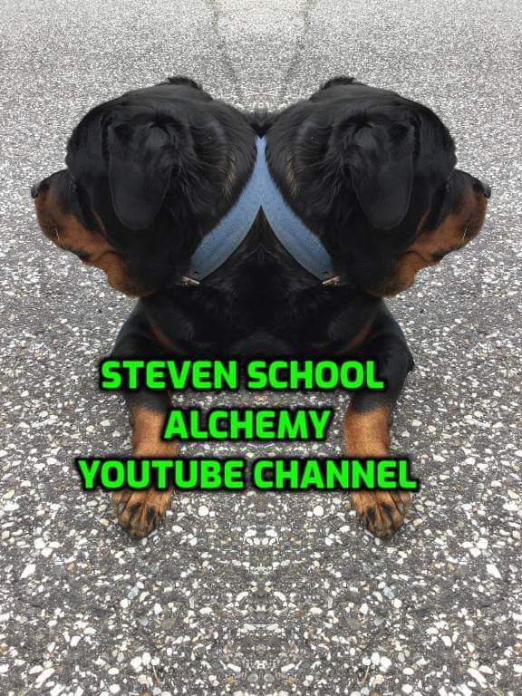 Rottweiler with two heads image only
