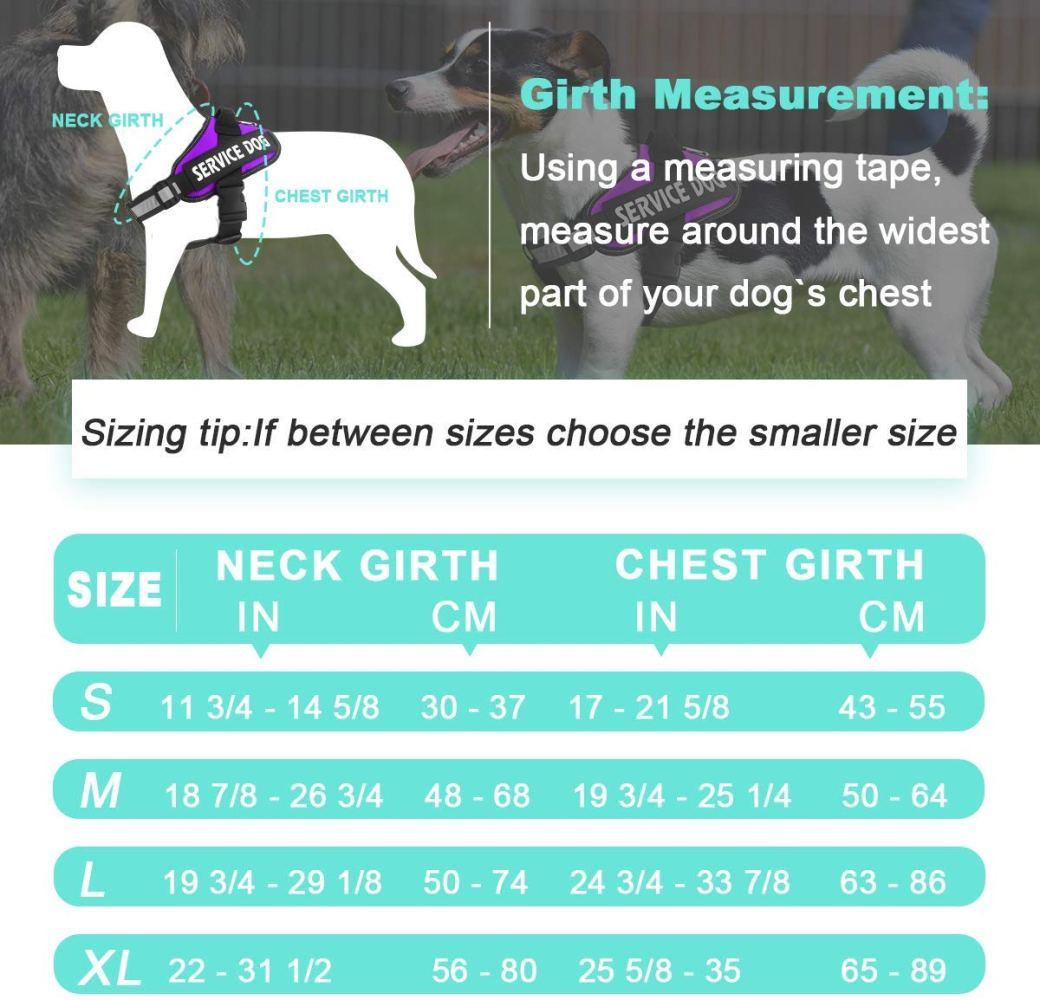 Illustration for How to measure your service dog for a pet vest harness.