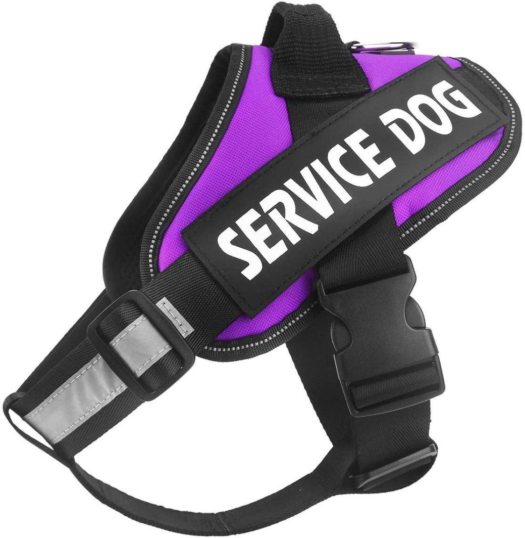 Service Dog Harness image